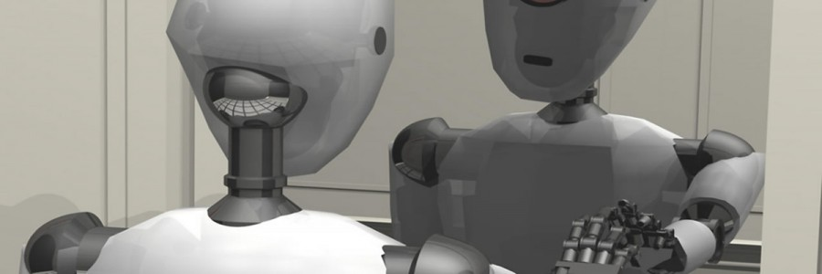 Artificial Self in Robots
