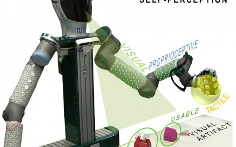 Yielding self-perception in robots through sensorimotor contingencies